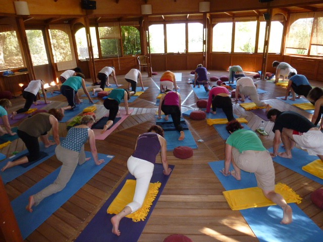 Group Yoga Session Retreat
